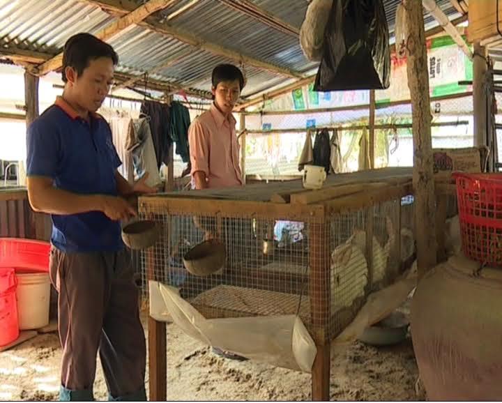 Gương thanh niên sản xuất, thành công với mô hình nuôi thỏ, nuôi dê tại xã Châu Hưng