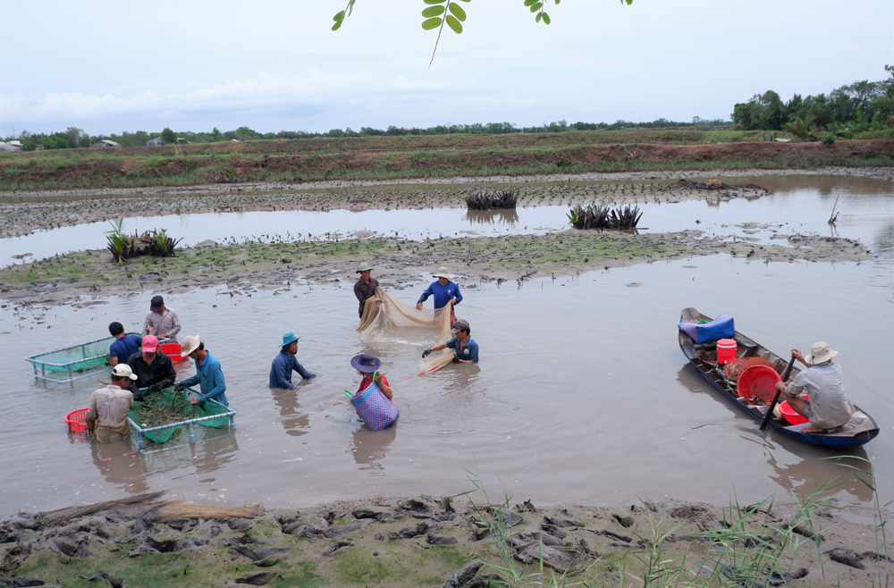 Giao Thạnh phát huy vai trò chủ thể của người dân trong xây dựng xã đạt chuẩn nông thôn mới