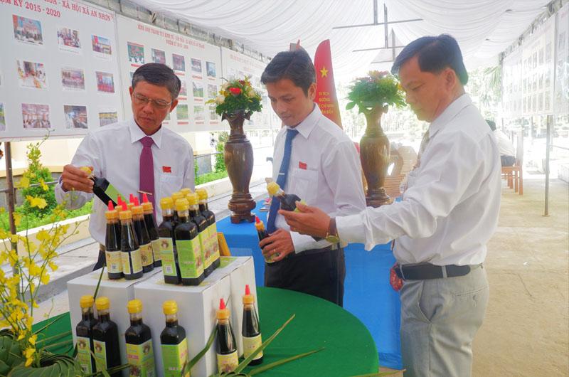 Phú Khánh tập trung xây dựng chuỗi giá trị cây dừa, các mô hình dừa sạch, hữu cơ