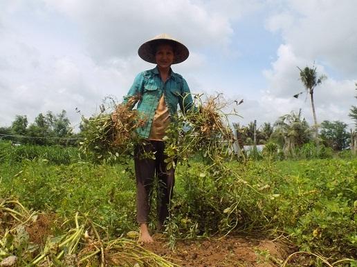 Người cao tuổi xã Tân Thanh tích cực lao động sản xuất phát triển kinh tế hộ gia đình