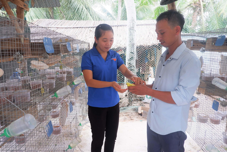 Thanh niên khởi nghiệp từ mô hình nuôi chim yến phụng