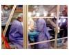 7 sự kiện Y tế - Khoa học 2006