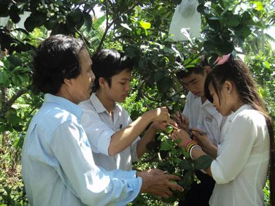 Thành công từ ứng dụng phép lai vào đề tài khoa học kỹ thuật của nhóm học sinh trung học cơ sở